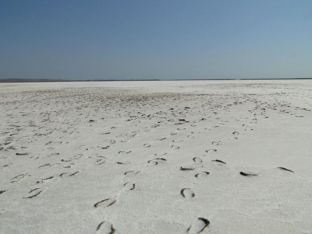 Salt Lake Alyki
